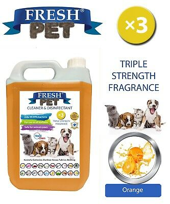 Fresh Pet Kennel Dog Disinfectant Triple Strength Fragrance - 5L Orange