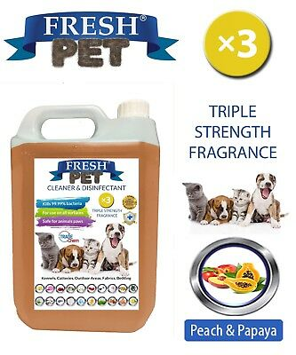 Fresh Pet Kennel Dog Disinfectant Triple Strength Fragrance - 5L Peach & Papaya