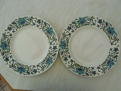 MIDWINTER SPANISH GARDEN 2 x Dinner plates 10.5  & MIDWINTER SPANISH GARDEN 2 x Dinner plates 10.5