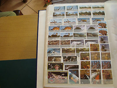 MIDDLE EAST - 28 stamps canceled (all state) stamp