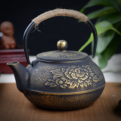 Vintage Cast iron pot uncoated iron teapot southern Japan iron kettle pot 800ml
