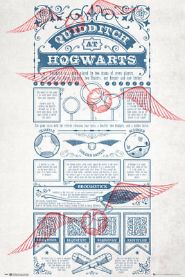 HARRY POTTER - QUIDDITCH RULES POSTER (61x91cm)  PICTURE PRINT NEW ART