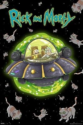 (Laminated) Rick And Morty Show Cats In Space Ufo Poster 61X91Cm New Print Art