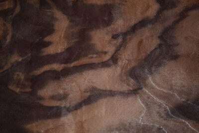 Claro Walnut Burl Raw Wood Veneer Sheets 9 x 15 inches 1/42nd thick      4554-38