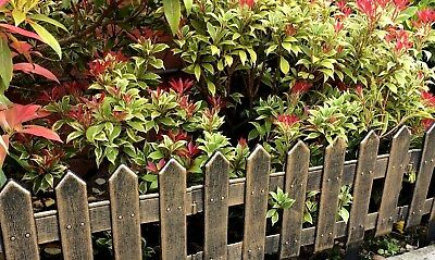 New Pack Of 4 Garden Patio Wood Look Border Fencing Plastic Fence
