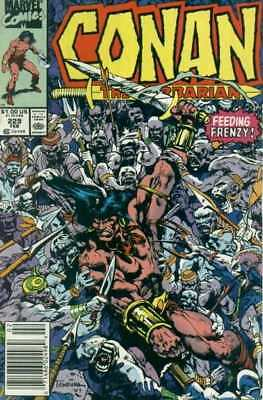 Conan the Barbarian (1970 series) #229 in Near Mint condition. FREE bag/board