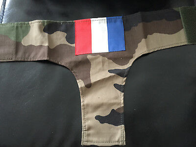 Brassard France Opex Operations Exterieures Armee De Terre Militaria Pucelle