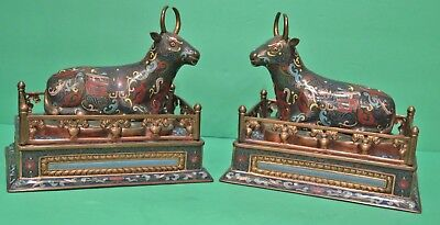 Chinese Cloisonne Figurine Pair Reclining Bulls (Cows) on Pedestal Qing 19th Cen