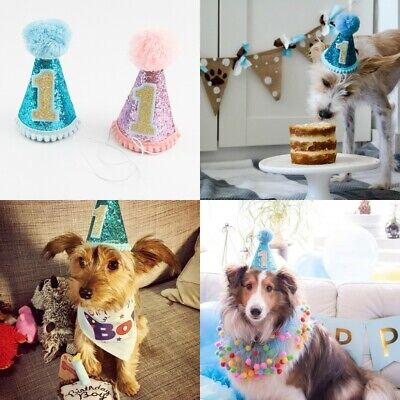 1 Year Old Birthday Hat For Dog Cat Puppy Party Costume Pet Headwear Accessory