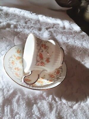 Rosina Queens Teacup Saucer Set Mother Fine Bone China Yellow Floral English