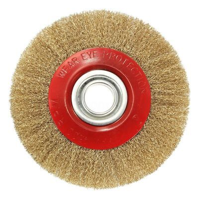 6X(Wire Brush Wheel for Bench Grinder Polish + Reducers Adaptor Rings,8inch 200)