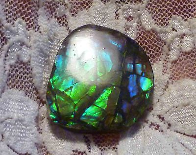 27.75cts Double Sided Multi-Color AMMOLITE 28x25mm Canada Finished Gemstone