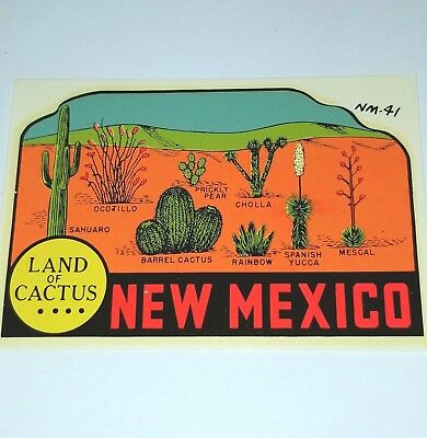 New mexico decal land of cactus lindgren turner co water desert travel sticker