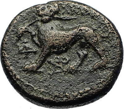SARDES in LYDIA 133BC Authentic Ancient Greek Coin DIONYSUS and PANTHER i69553