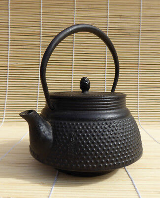 #166 Small Japanese Cast Iron Tetsubin with Insert, Teapot, Arare Pattern