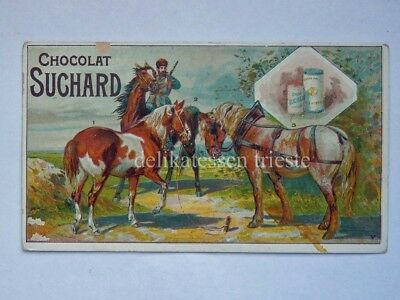 SUCHARD CACAO chocolate antica figurina lito cavallo Cheval horse V
