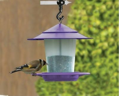 Garland Lantern Bird Seed & Nut Feeder Purple