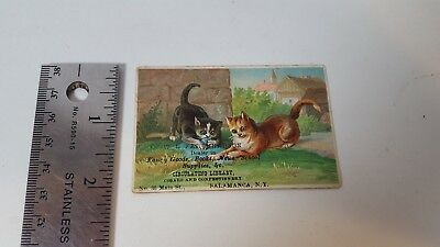 Farquharson Dealer in Books Cigars Confectionery Salamanca NY Antique Trade Card