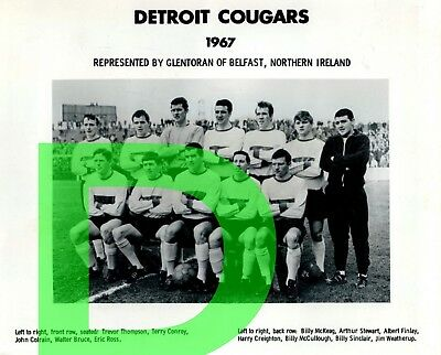 1968 DETROIT COUGARS  NASL REPRINT NPSL Team  Photo