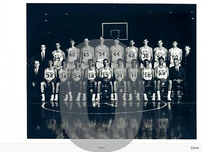 1968 Kentucky Wildcats Basketball  Reprint Team Photo