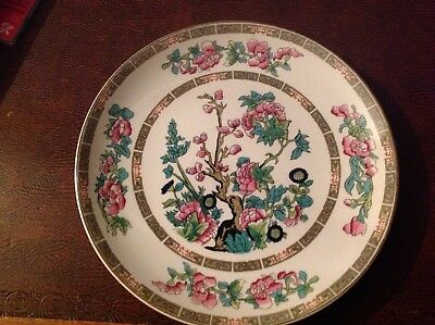 Vintage China. Indian Tree Plate . Lord Nelson Pottery