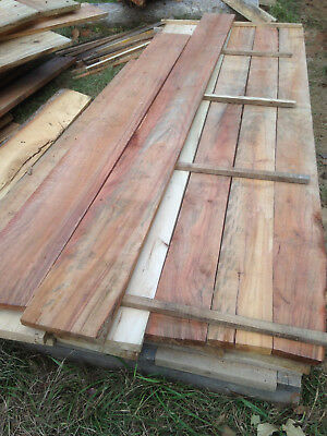 Eco Camphor Laurel timber shelving 32mm x 250 x 3 meters meter ready to use.