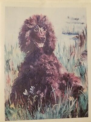 Dog Breed Note Cards IRISH WATER SPANIEL Best Friends by Ruth Maystead Pack of 4