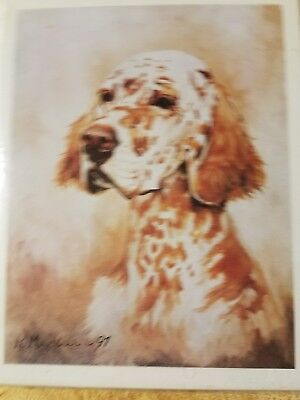 Dog Breed Note Cards ENGLISH SETTER Best Friends by Ruth Maystead Pack of 4