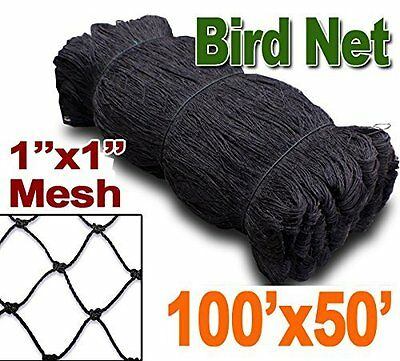 "X-Large Bird Netting Net For Bird Chicken Poultry Avaiary Game Pens 1/"" Holes 258"