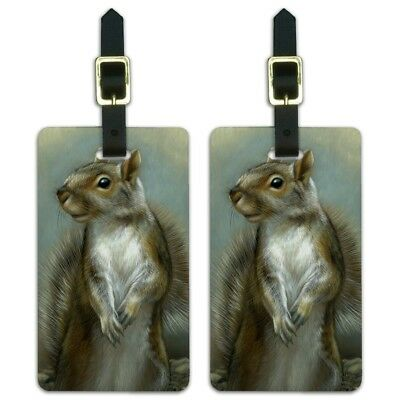 Mischievous Squirrel Luggage ID Tags Suitcase Carry-On Cards - Set of 2