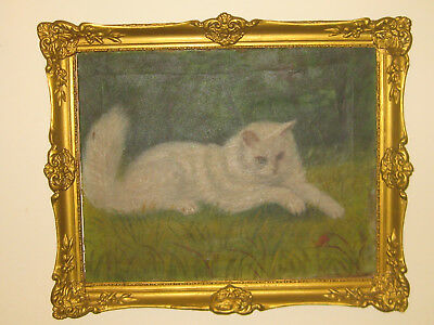 Antique oil painting on canvas SIGNED 1800's CAT IN NATURE