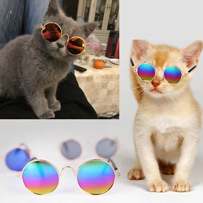 Pet Cat Puppy Kitten Sunglasses Cool Funny Glasses Pograph Photo Pet Toys Decor