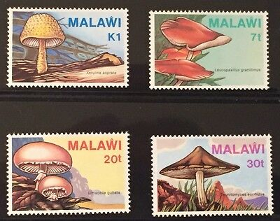 Malawi #458-61 Mushrooms MNH