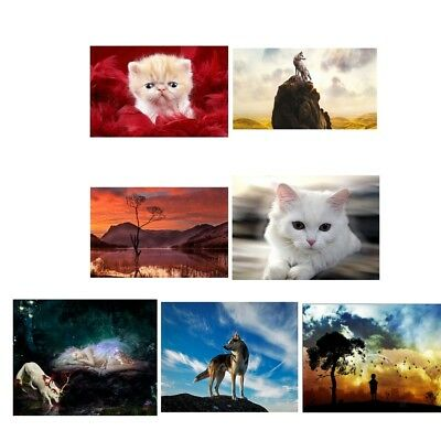 Animals Cat 5D Diamond Painting Embroidery Paint By Number Kit Wall Decor