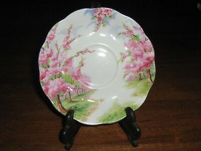 Royal Abbert Fine China Made In England Blossom Time Saucer  Mint Condition.