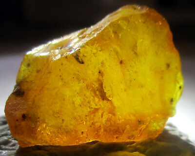 10.95crt Amber From Madagascar