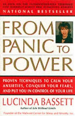 From Panic to Power by Lucinda Bassett 9780060927585 (Paperback, 1996)