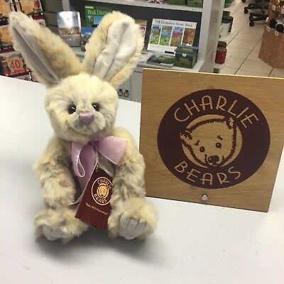 Bnwt Plush Bear Charlie Bears Hop Official Stockist