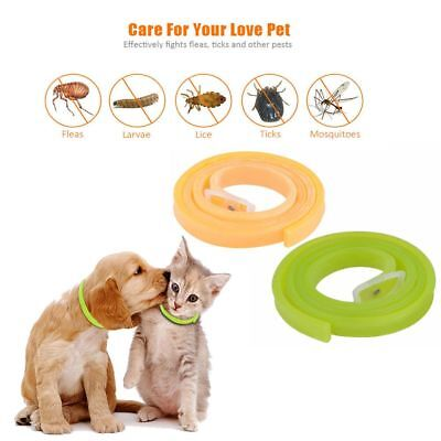 Insect Biting Dog Cat Repel Remover Remedy Pet Flea Tick Collar Neck Strap