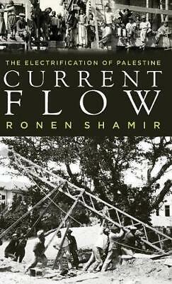 Current Flow: The Electrification of Palestine by Ronen Shamir (Hardback, 2013)