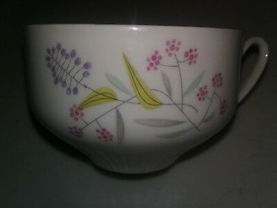 Bohemian Fine China Ceramics Cup and Saucer Czechoslovakia Spring