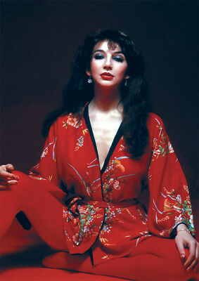 Kate Bush sitting Red NEW POSTER