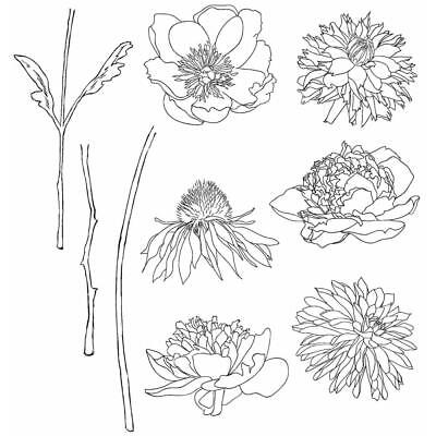 """NEW Tim Holtz Stampers Anonymous """"FLOWER GARDEN"""" Rubber Cling Stamp Set"""