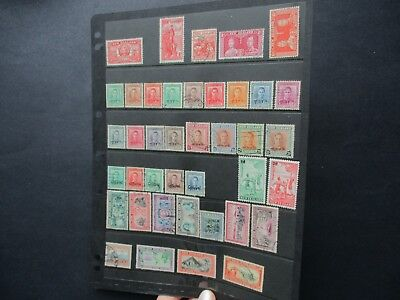 ESTATE: New Zealand Collection on pages - great item (3227)