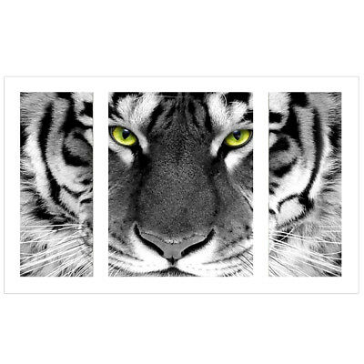 Full Drill Tiger Diamond Embroidery Painting DIY 5D Cross Stitch Kit Craft Gifts