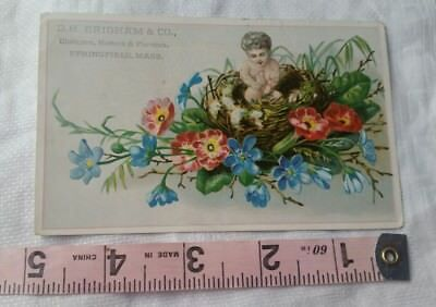 Vintage Advertising Card Retro Early Collectable D H Brighman & Co Clothiers