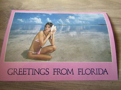 Greetings From Florida  Postcard  Bikini Girl With Shell on the Ocean