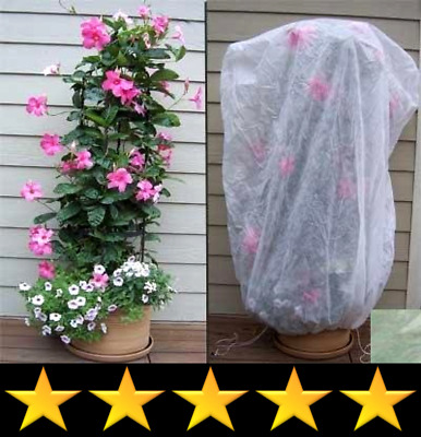 Bag XL Frost Protection Plant Cover-Green