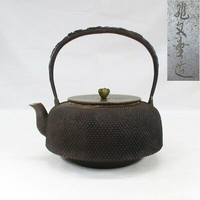 B913: Japanese old iron kettle of ARARE pattern by famous RYUBUN-DO