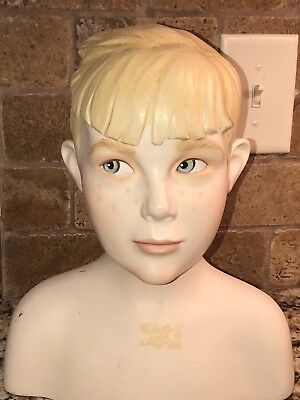 Boy Mannequin Or Male Display Head Bust